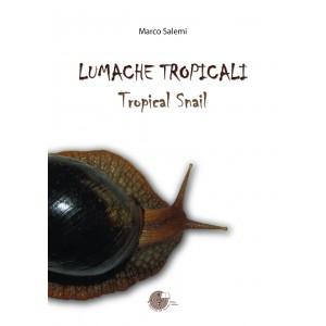 Lumache tropicali - Tropical snails