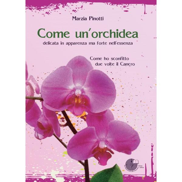 Come un 39 orchidea - Come curare un orchidea in casa ...